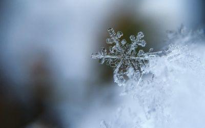In den Wintermonaten keine Schneeräumung und Winterdienst